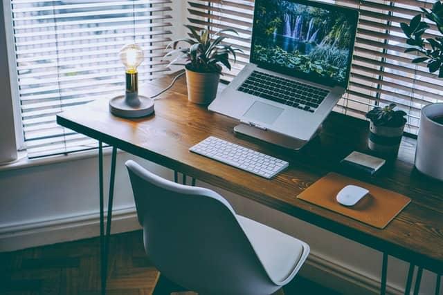 office-desk-plants